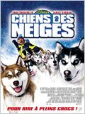 Chiens des neiges