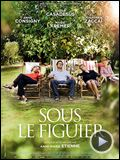Photo : Sous le figuier Bande-annonce