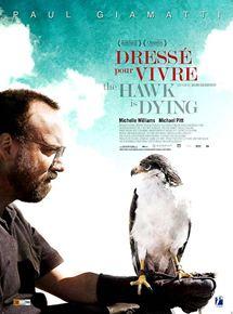 The Hawk is Dying - Dressé pour vivre