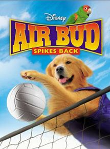 Airbud 5 : superstar streaming