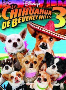 Le Chihuahua de Beverly Hills 3 : Viva La Fiesta ! streaming