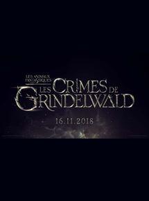 Les Animaux fantastiques – Les crimes de Grindelwald streaming