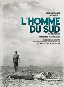 L'Homme du Sud streaming