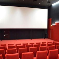 Cinéma Yves Robert