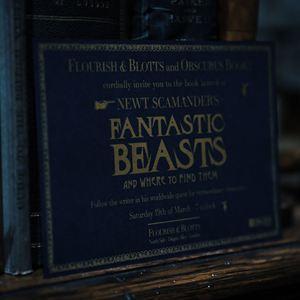 Les Animaux fantastiques : Les crimes de Grindelwald : Photo promotionnelle