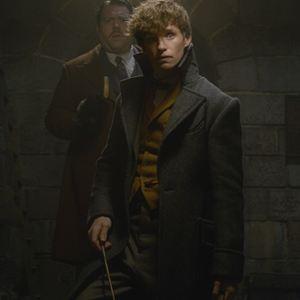 Les Animaux fantastiques : Les crimes de Grindelwald : Photo Dan Fogler, Eddie Redmayne