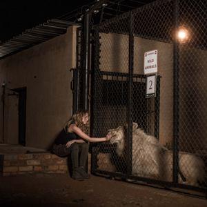 Mia et le Lion Blanc : Photo Daniah De Villiers