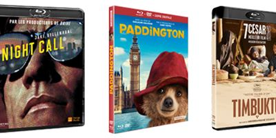 Paddington, Night Call, Timbuktu... Les 10 Blu-rays / DVD à se procurer d'urgence en avril