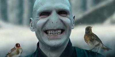 Emma Watson dans La Belle et Voldemort : un crossover romantique