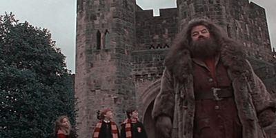 Harry Potter : connaissiez-vous ce trucage sur Hagrid ?