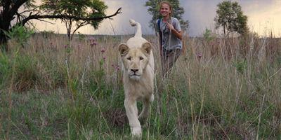 """Mia et le lion blanc : """"Avoir un lion comme ami, c'est extraordinaire et c'est ce qu'a fait cette enfant"""""""