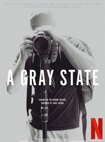 A Gray State streaming