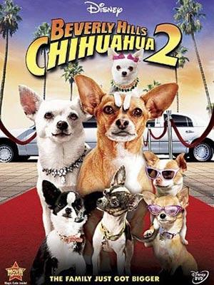 telecharger Le Chihuahua de Beverly Hills 2 HDLight Français