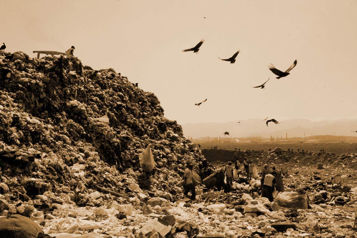 Waste Land : photo Lucy Walker