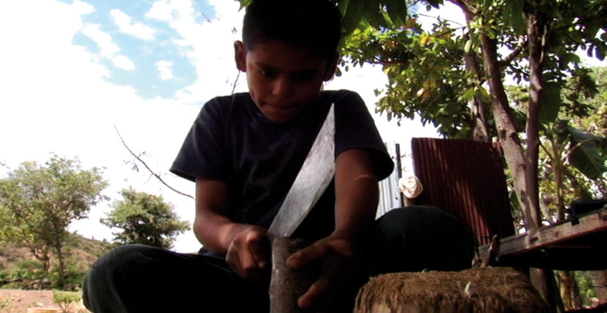 Los Herederos - Les Enfants héritiers : photo