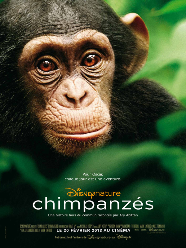 Chimpanzés streaming
