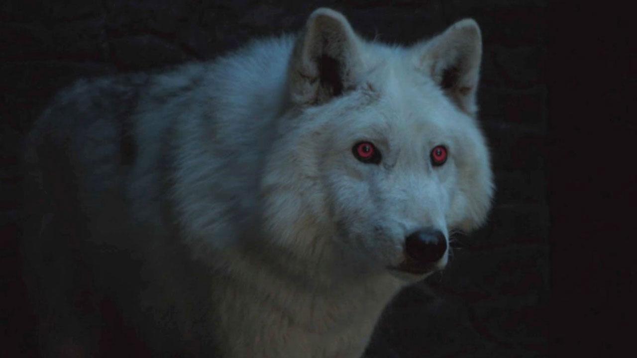 Game of Thrones : une bataille de loups géants était prévue dans la saison 8