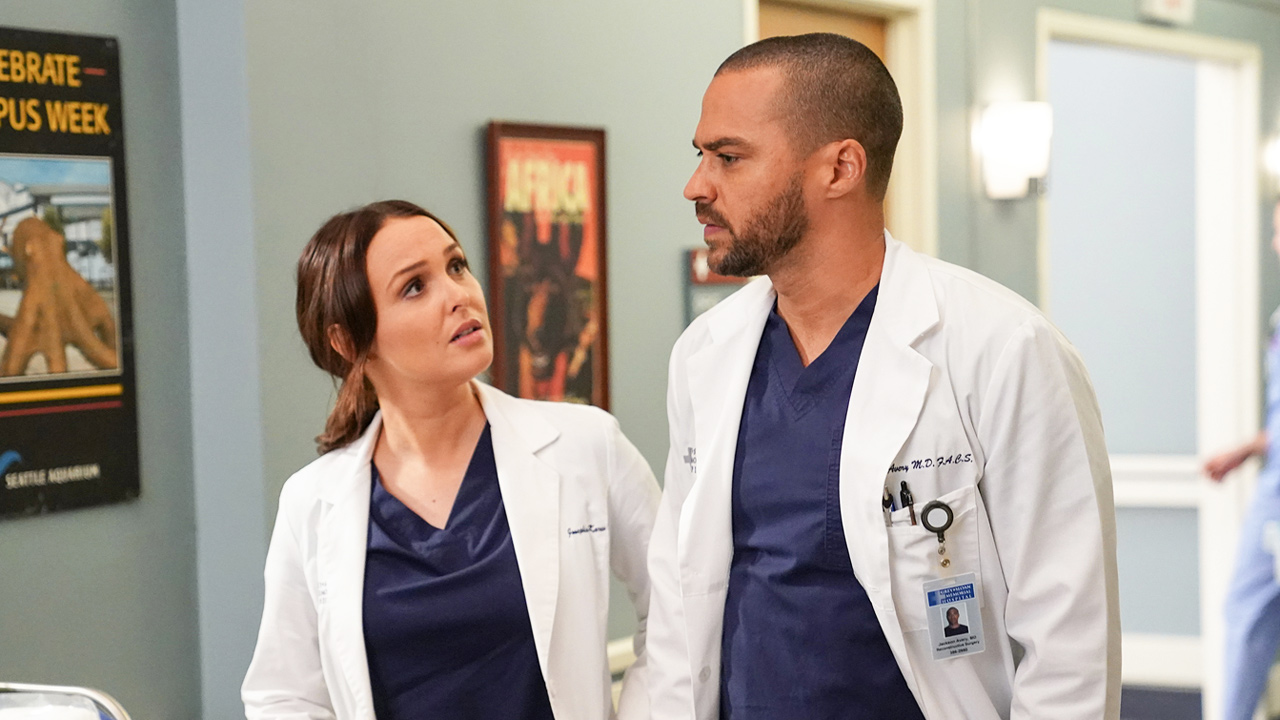 Grey's Anatomy saison 16 : un ours sème la panique dans le teaser de l'épisode 14
