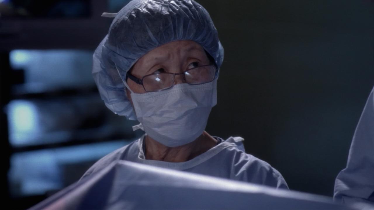 Grey's Anatomy sur TF1 : quelle actrice est une véritable infirmière ?