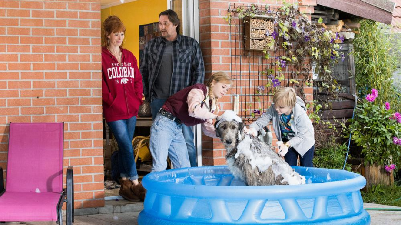 HPI sur TF1 : le chien de l'épisode 5 bientôt dans un grand film hollywoodien