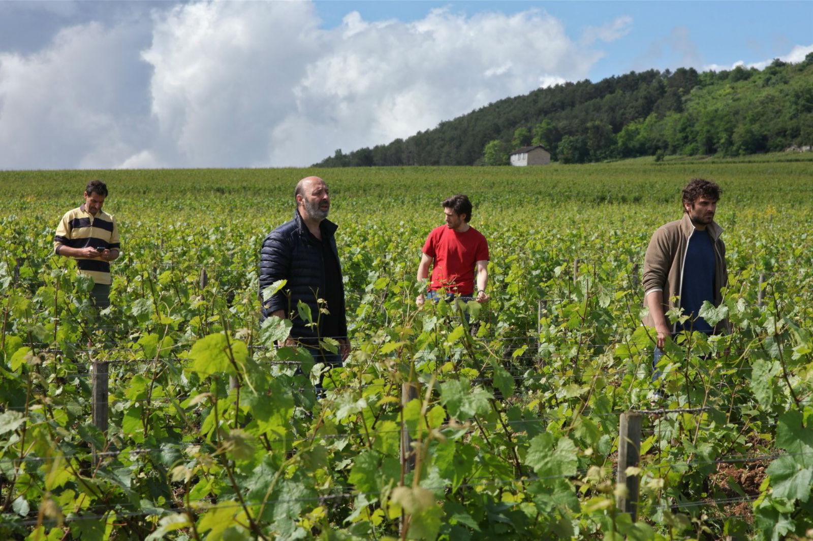 Descargar Gratis Nuestra vida en la Borgoña