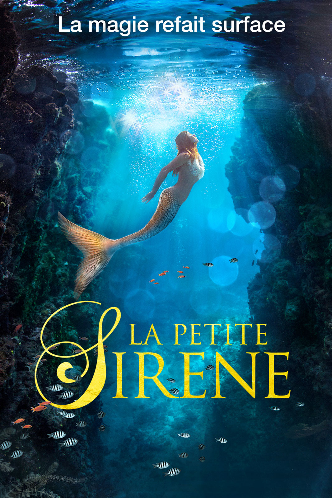 La petite sir ne film 2018 allocin - Barbi sirene 2 film ...