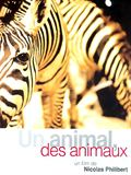 Photo : Un animal, des animaux