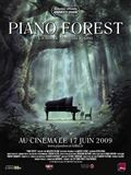 Photo : Piano Forest
