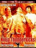 Photo : Ninjas Thunderkicks