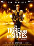 Photo : Un tigre parmi les singes