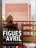 Photo : Des Figues en avril