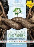 Photo : L'Intelligence des Arbres