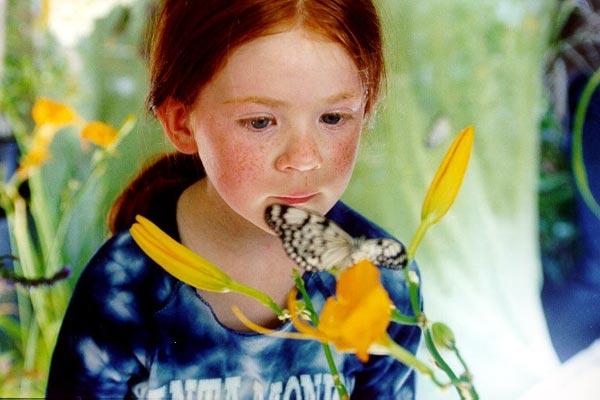 Le Papillon : Photo Claire Bouanich, Philippe Muyl