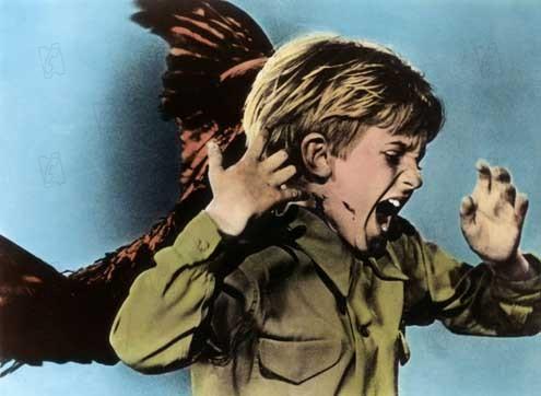 Les Oiseaux : Photo