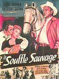 Le Souffle sauvage : Affiche