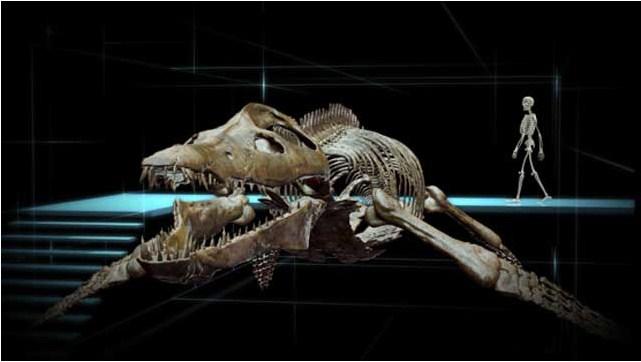 Océanosaures 3D : Voyage au Temps des Dinosaures : Photo