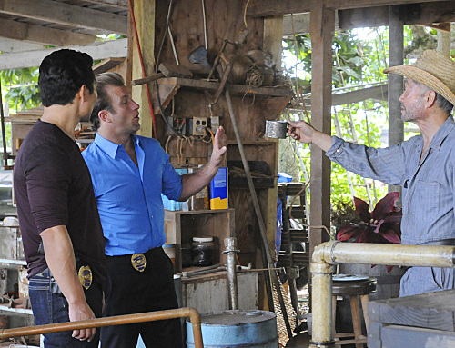 Photo Daniel Dae Kim, George Takei, Scott Caan