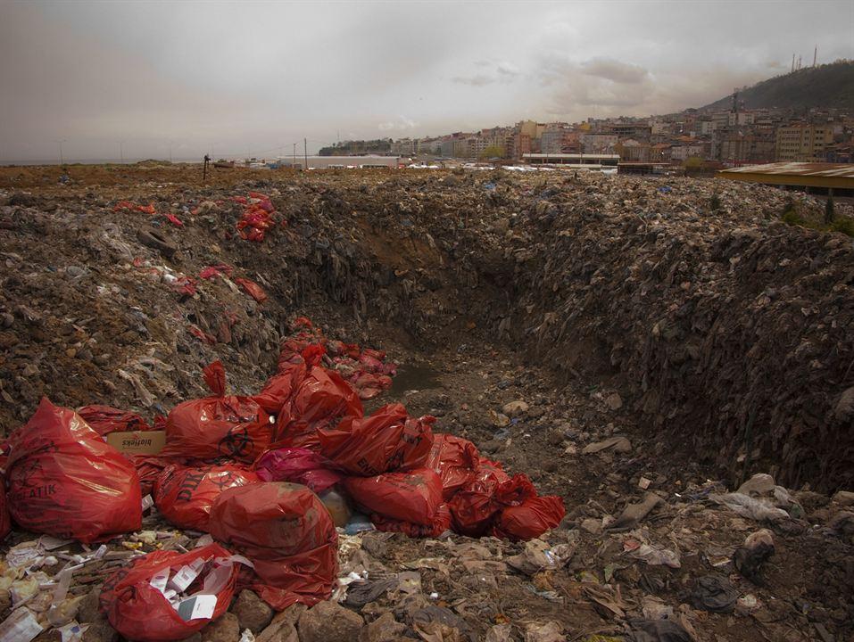 Polluting Paradise : Photo