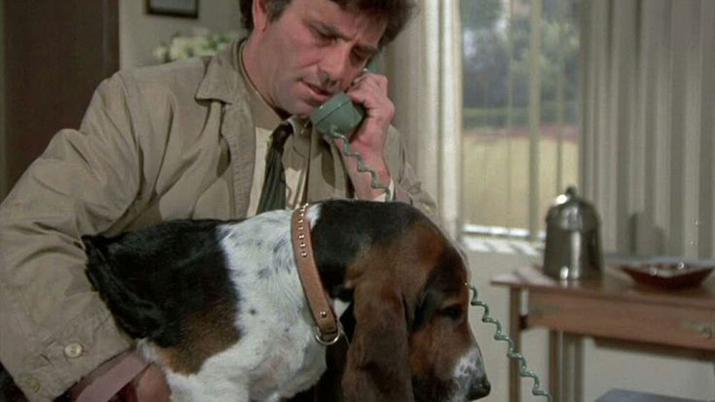 Le lieutenant Columbo et son basset hound, Le Chien
