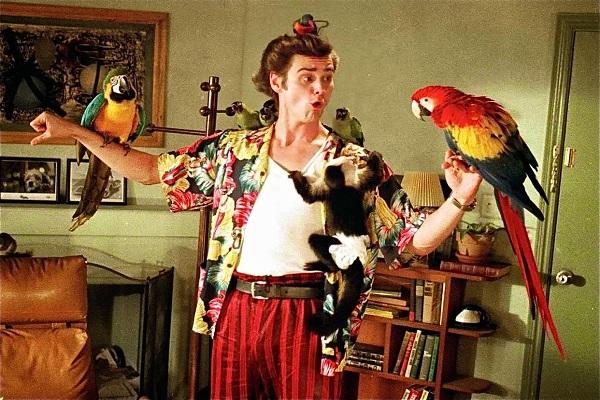 Ace Ventura, détective chiens et chats : Photo