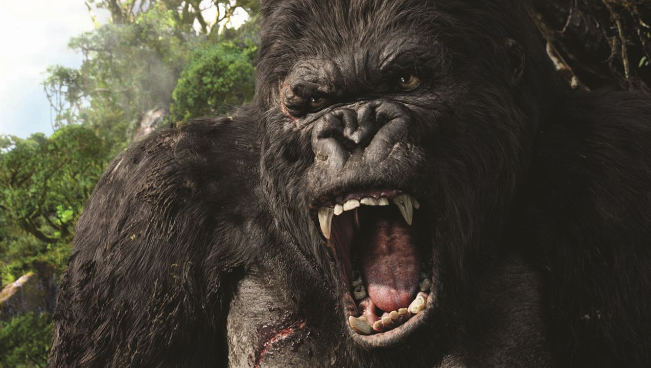 King Kong : Photo