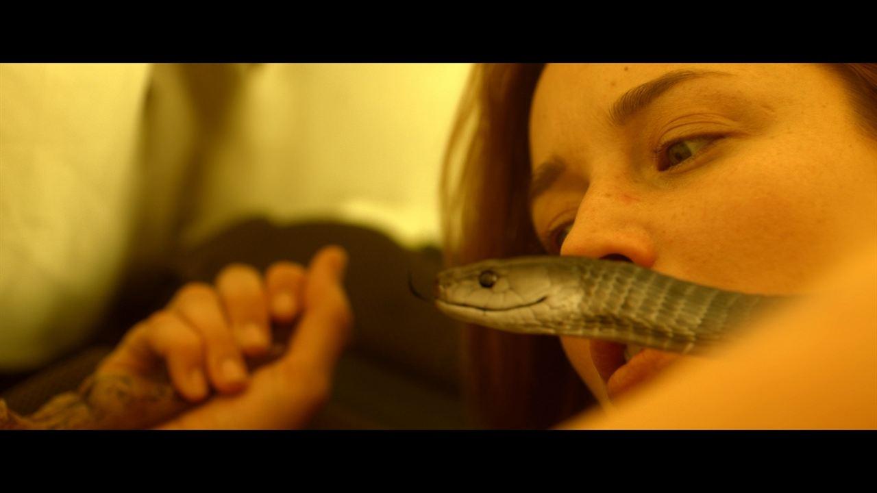 Serpent : Photo Sarah Dumont