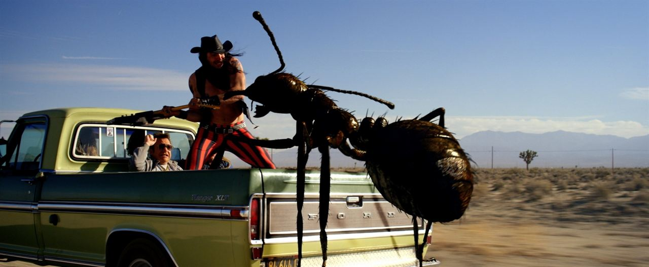 Dead Ant : Photo Tom Arnold