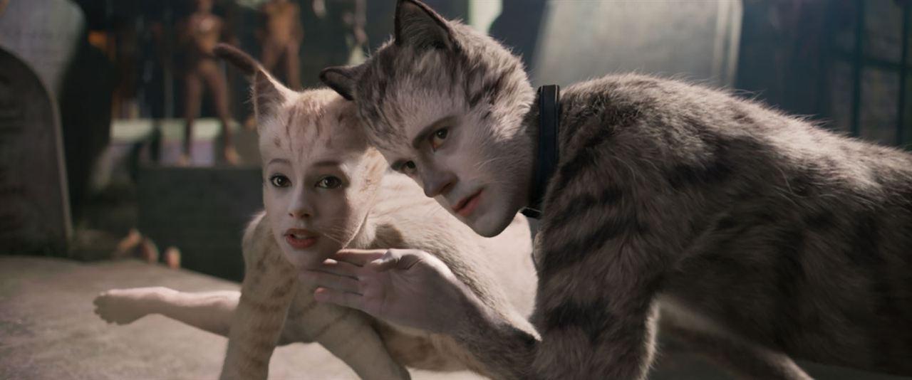 Cats : Photo Francesca Hayward