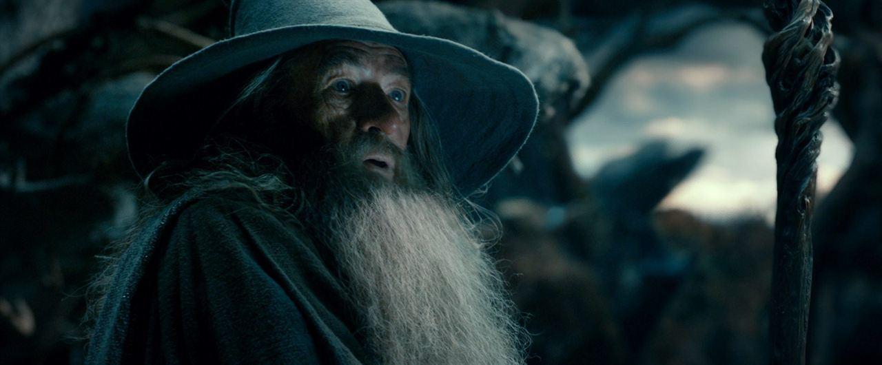 Le Hobbit : la Désolation de Smaug : Photo Ian McKellen