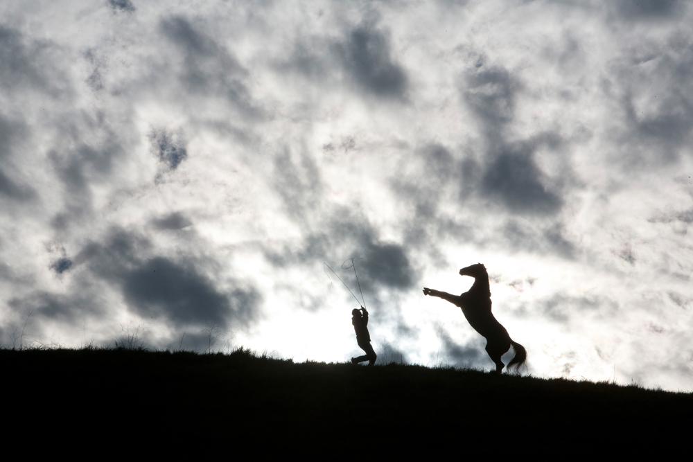 Le ranch des coeurs sauvages : Photo