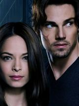 Beauty and The Beast (2012) Saison 4 Streaming