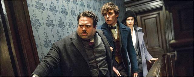 Les Animaux fantastiques: des personnages d'Harry Potter feront une apparition !