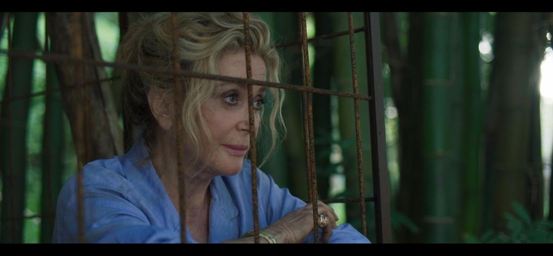 Photo du film Terrible Jungle