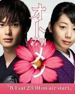 Affiche de la série Otomen: Natsu